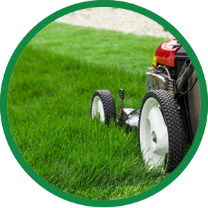 st george lawn care services